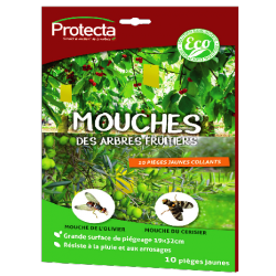 MOUCH'CLAC Fruitier Eco
