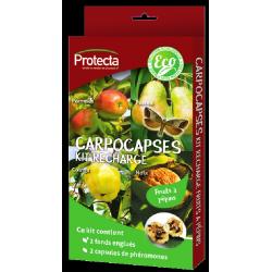 Recharge CARPOCASPES, 2...
